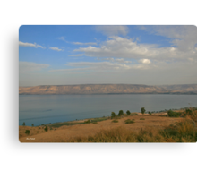 View of the Kineret Canvas Print