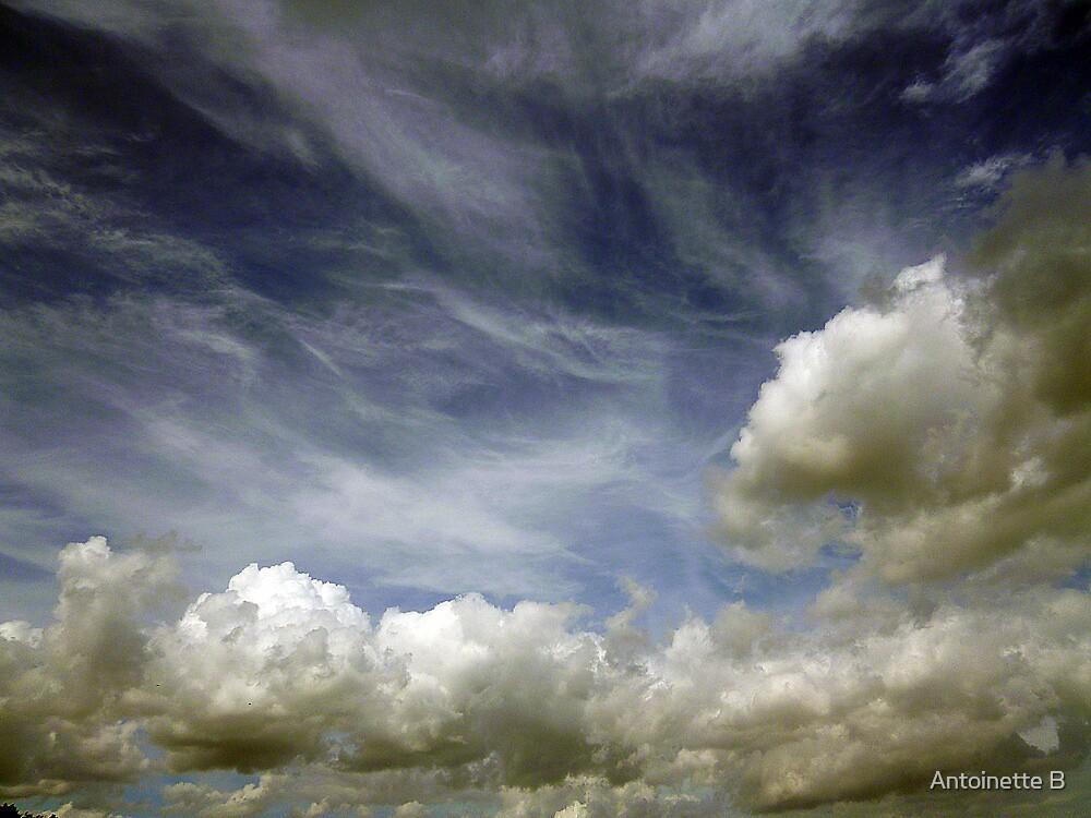 Clouds by Antoinette B