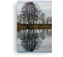 Of Mirrors and Trees Canvas Print