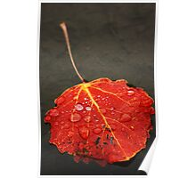 Autumn Yet Again Poster