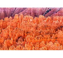 Hoodoos on Fire at Bryce Photographic Print