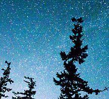 Night Sky by dsnowman