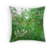 Holly Bush Throw Pillow