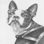 """Graphite drawing of """"Pixie, c. 1962"""". by Pam Humbargar"""