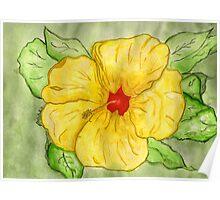 Kathy's Hawaiian State Flower Poster