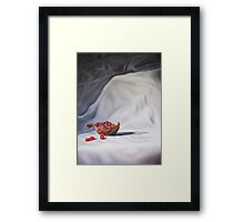 The Pomegranate Framed Print