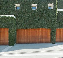 Overgrown Modern House by visualspectrum