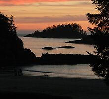 Sunset in Tofino by Richard B Cree