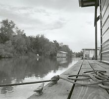 Atchafalaya House Boat Dock by Stephanie Elder