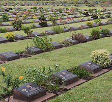 War Cemetery by Vickie Burt
