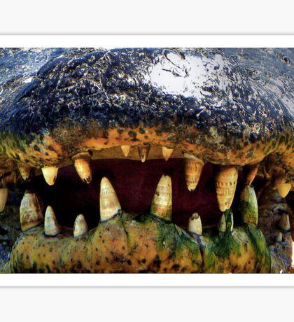 Gator's Teeth  Sticker