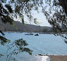 Boats on the water through trees by Eleanor11