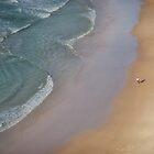 Solitude by halans