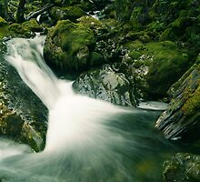 Cascade, Mother Cummings Rivulet, northern Tasmania by Nic Haygarth