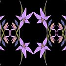 Pink Fairy Native Orchid Design by Leonie Mac Lean