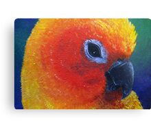 Beautiful Tropical Bird Canvas Print