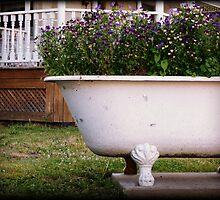 Antique Bathtub Flowers No. 2 floral nature photography by jemvistaprint