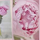 The Heart of the Peony by SandraRos
