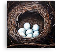 Bird Nest realistic animal art oil painting Canvas Print