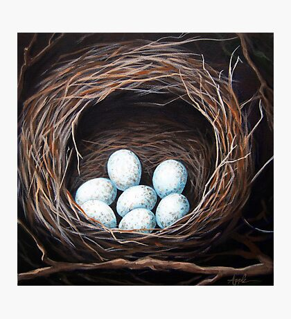 Bird Nest realistic animal art oil painting Photographic Print