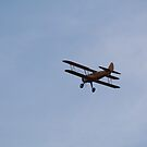 Biplane goin Away by G. Cobble