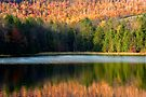Last Autumn Sunlight at the Lake by Gene Walls