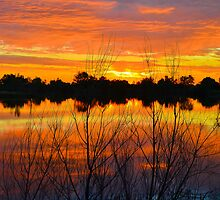 Sunrise Lake Reflections by Photopa