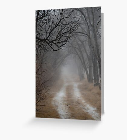 Dirt Road and Trees in the Fog Greeting Card