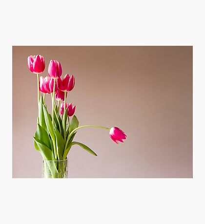 Glass vase with bunch of pink tulips Photographic Print