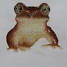little frog by diane nicholson
