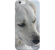 Just a Pair of Pretty Eyes and a Snow-covered Muzzle iPhone Case/Skin