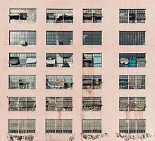 Factory Facade by visualspectrum