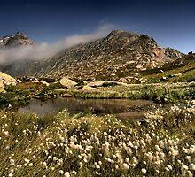 Furka Pass Switzerland by Nigel  Dean