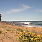 The Basin, Mona Vale Beach, Sydney (B) by Jane Wilkinson-Franssen