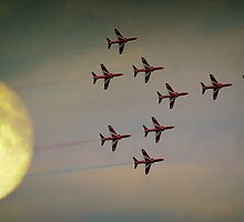 Fly Past by naturelover