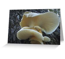 The Seven Year Itch Mushroom Greeting Card