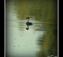 Ugly duckling by hotshotsdp