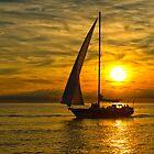 Sailing by (Tallow) Dave  Van de Laar