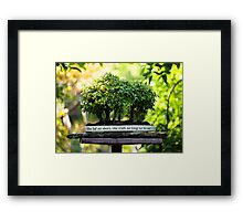 Miniature Green Forest Bonsai Pot Pedestal Leaves Framed Print