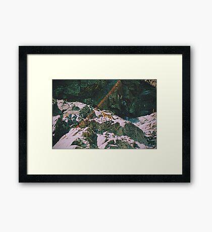 Zorro en las alturas Framed Print