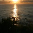 Here comes the sun - Nth Mona Vale Headland, Sydney by Jane Wilkinson-Franssen