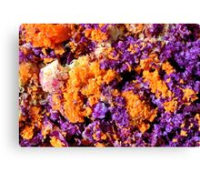 The Beauty of Ordinary Canvas Print