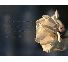Flower of light Photographic Print