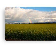 Spring on the farmlands Canvas Print
