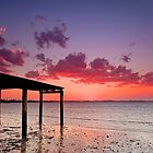 A New Jetty - Cleveland Qld Australia by Beth  Wode