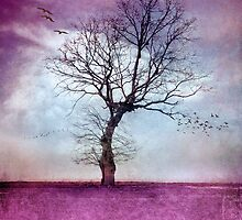 ATMOSPHERIC TREE | Morning Glow by ♛ VIAINA