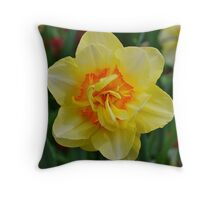 Delightful Daffy Dilly Throw Pillow
