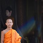Young Monk by phil decocco