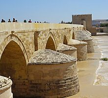 Roman Bridge - Cordoba by MikeSquires