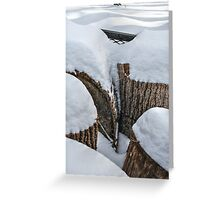 Snow-Covered Stumps Greeting Card